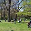 About Awbury Arboretum