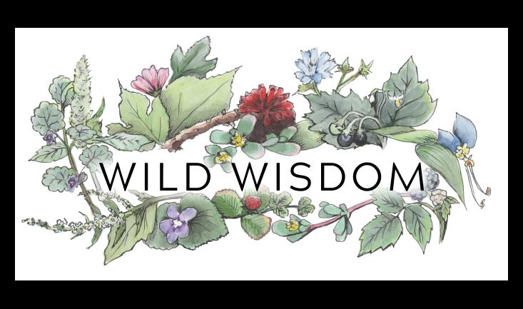 Wild Wisdom