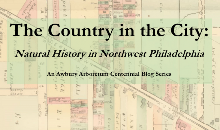"""Introduction to """"The Country in the City"""""""