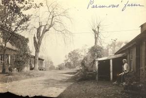 Paramour's Farm