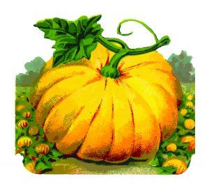 vintage pumpkin.png