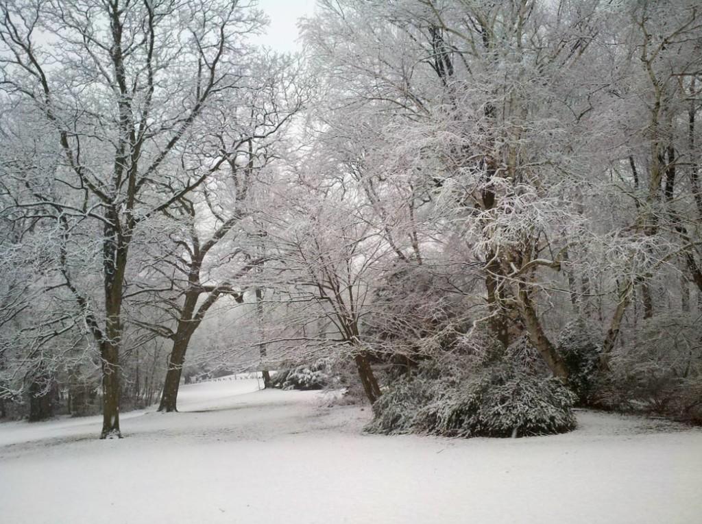 Winter Snow Prediction for 2014