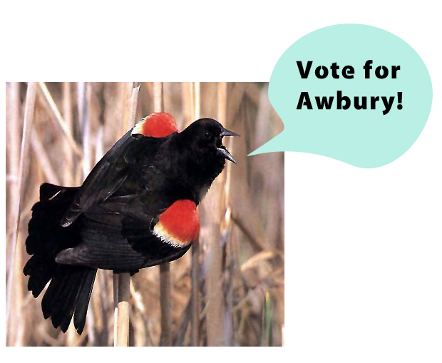 Vote to Restore Awbury's Historic Bird List!