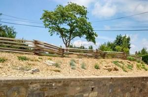 Williamsburg Style Fence