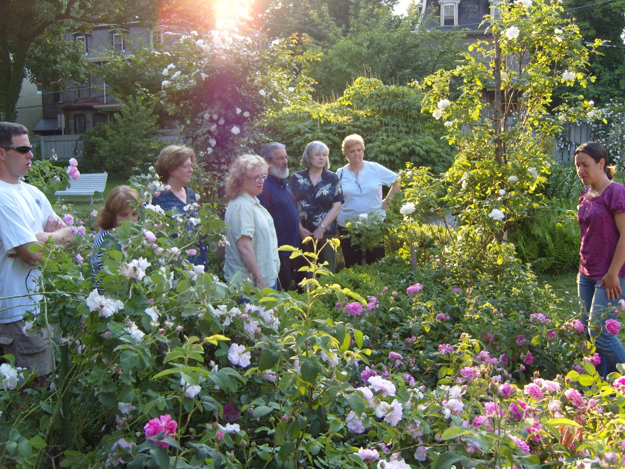Visitors to the Wyck Rose Garden, Wyck Association