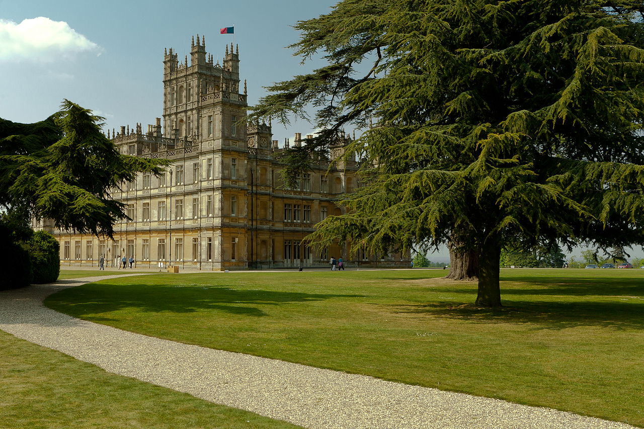 Cedrus libani (Lebanon cedar, cedar of Lebanon) at Highclere Castle; a familiar view to watchers of Downton Abbey