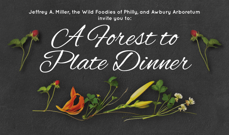 Forest to Plate Web Image