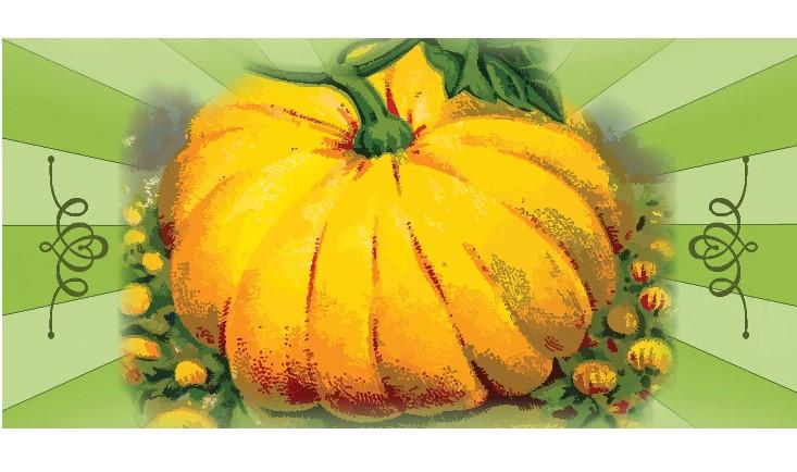 Harvest Fest Ad cover