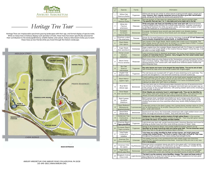 Heritage Tree Tour