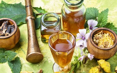 Herbal Aid Ed Registration: a 9-month Immersive Program